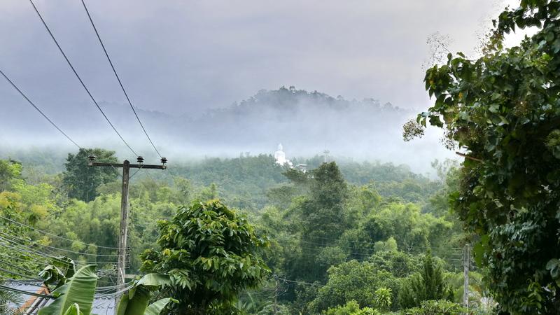 Buddha in the Fog