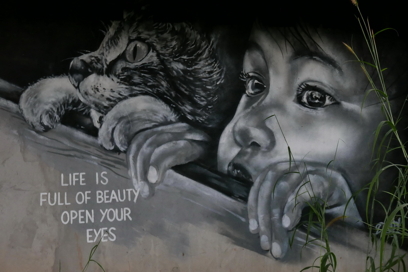 Life is Full of Beauty. Open Your Eyes