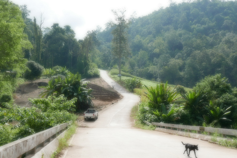 On the Way to Pai Secret Hot Spring